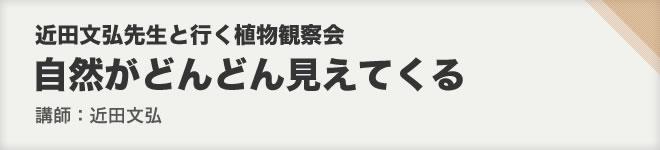 伊豆下田・爪木崎の自然(1)